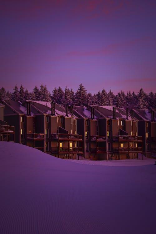Immagine gratuita di cabine, case, coperto di neve