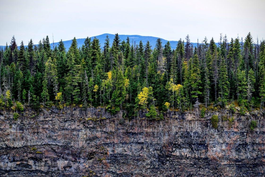 klippe, landskap, natur