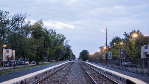 Základová fotografie zdarma na téma koleje, obloha, stromy, železnice