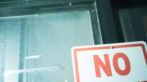 Základová fotografie zdarma na téma ne, pavouk, pavučina, prach