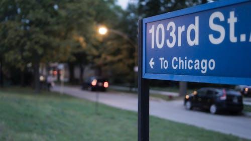 Základová fotografie zdarma na téma auta, chicago, lehký, stromy