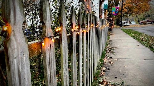 Free stock photo of close up, halloween, lights