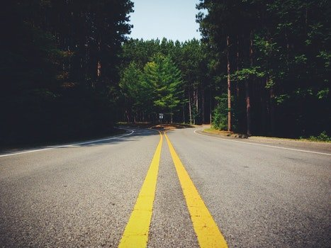 Free stock photo of road, curve, forest, lines
