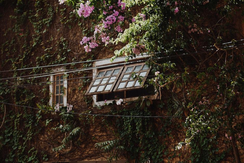 Brown Wooden Framed Glass Window