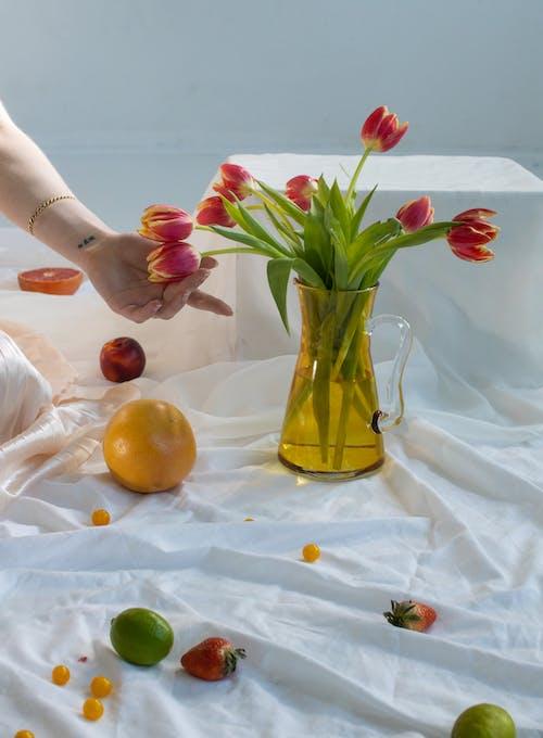 Fotos de stock gratuitas de adentro, amable, aroma