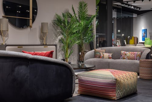 Comfortable sofas with cushions and pouf placed in creative eclectic styled living room decorated with potted green palm trees in modern apartment
