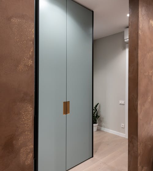 Modern apartment interior with big closet placed in hall near walls and potted green plant