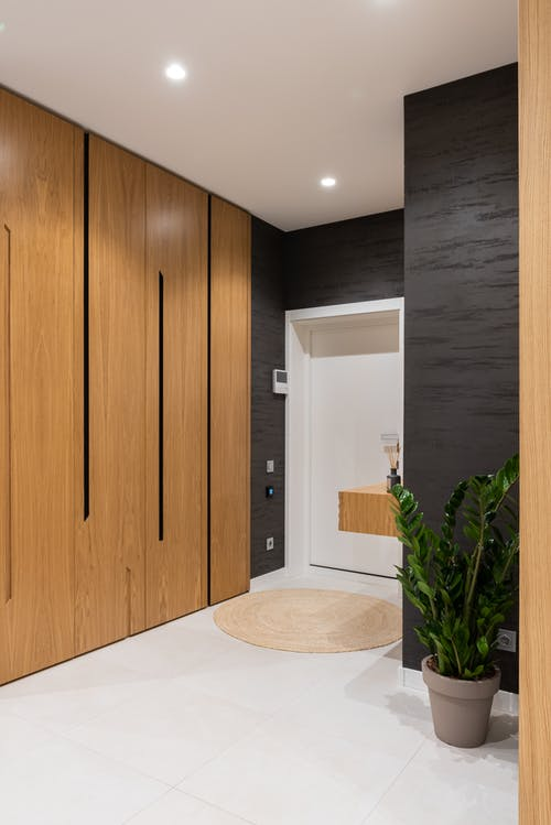Hallway interior with cabinet and potted plant near door