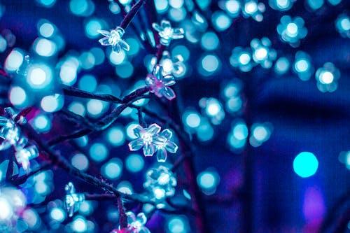Darmowe zdjęcie z galerii z boken, niebieskie światła, światła
