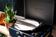 vintage, plant, record player