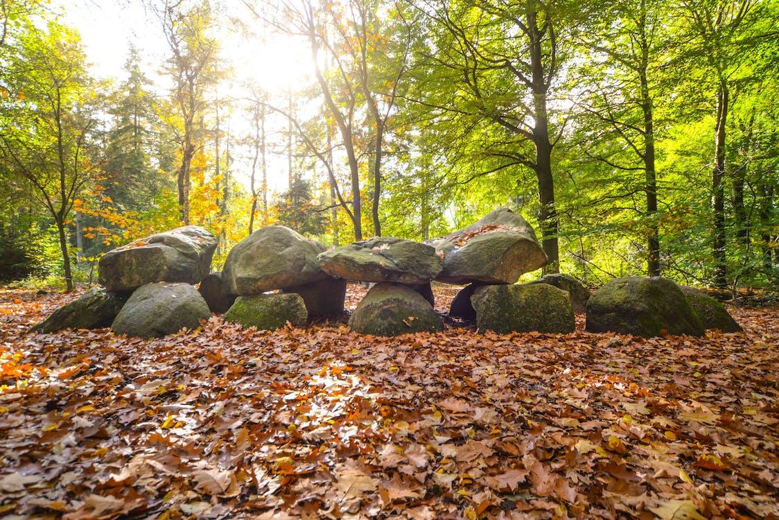 Free stock photo of beautiful, boulders, field