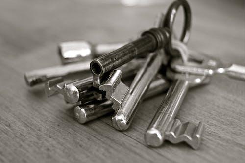 Stainless Steel Skeleton Key