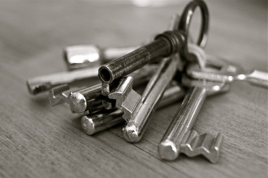 Stainless Steel Skeleton Key