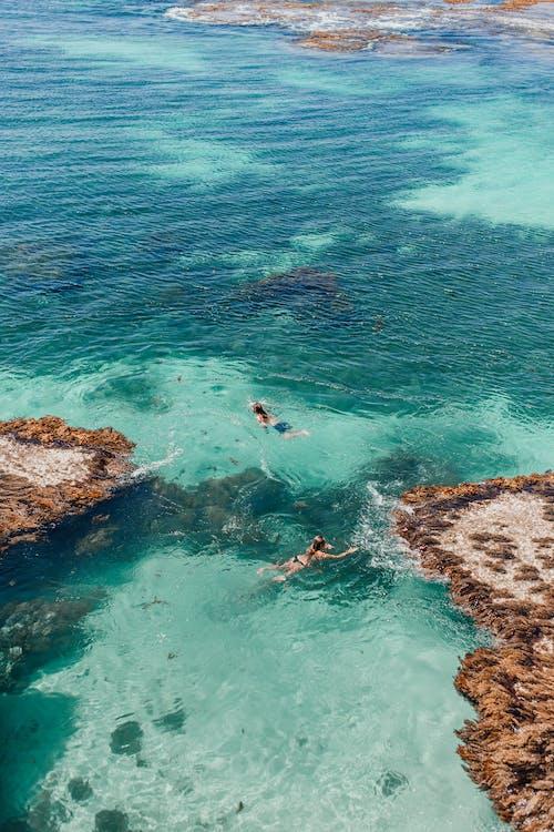 Kostenloses Stock Foto zu entspannung, erholung, ferien