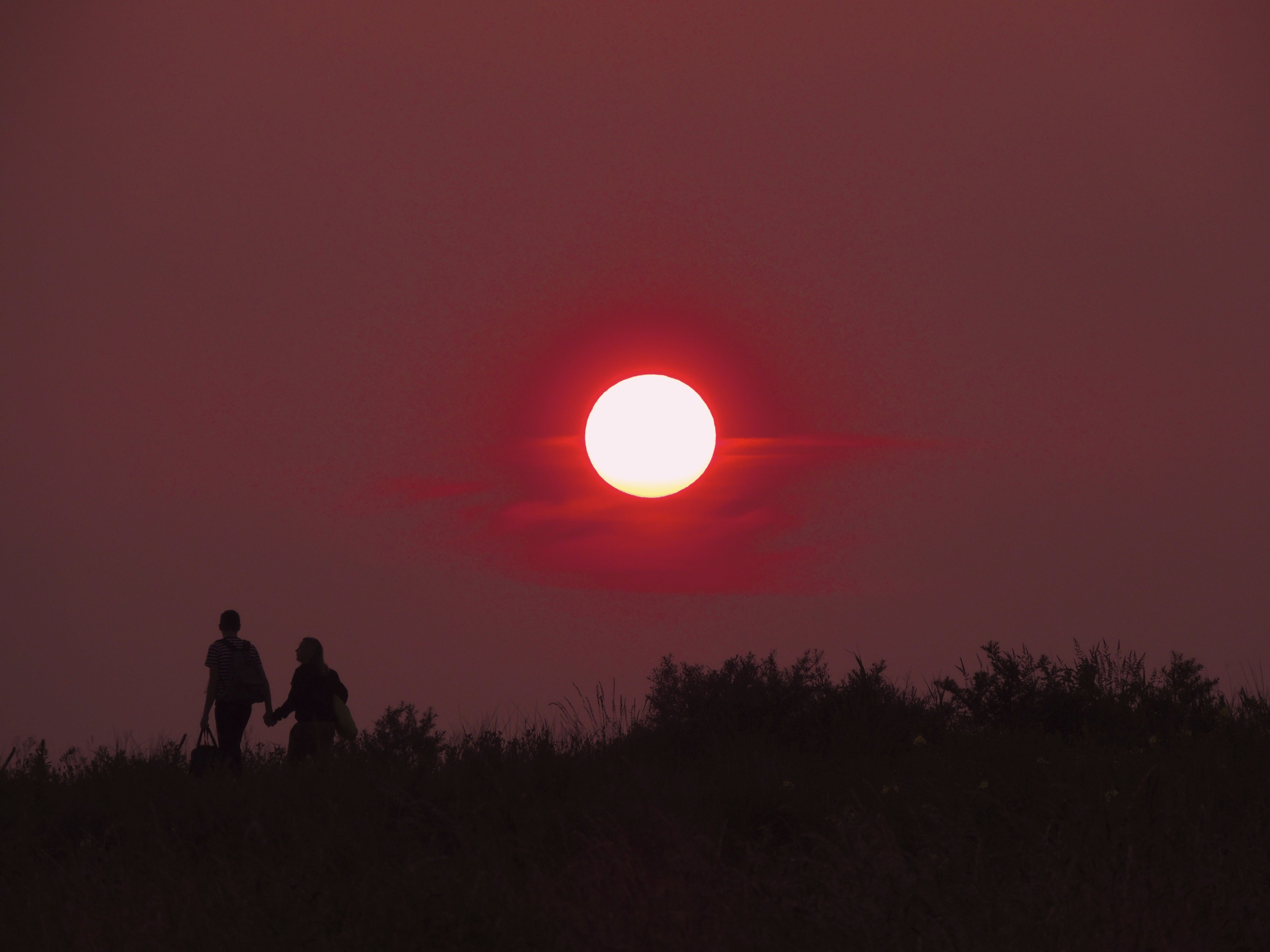 2 Person Walking Hand in Hand during Sunset