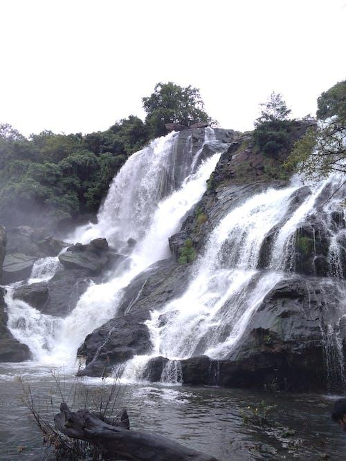 Foto stok gratis air, air murni, air terjun, alam