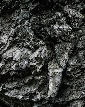 Free stock photo of nature, dark, pattern, texture
