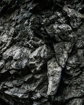 Kostenloses Stock Foto zu natur, dunkel, muster, textur