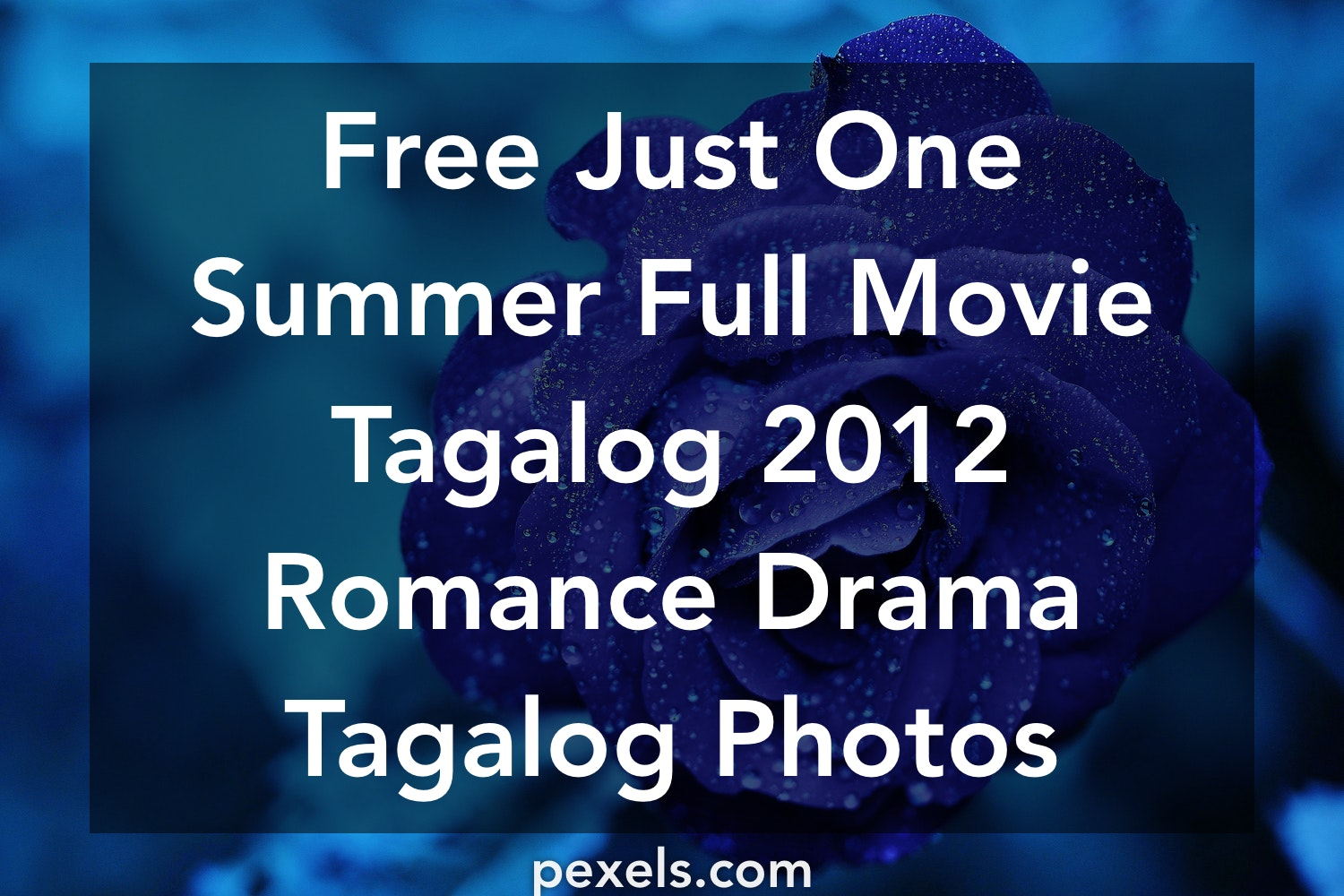 1000+ Engaging Just One Summer Full Movie Tagalog 2012 Romance Drama