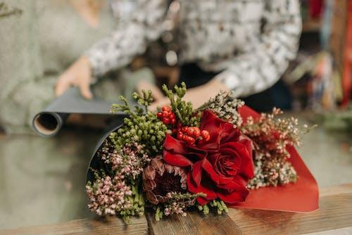 Gratis stockfoto met anoniem, bloeien, bloeiend