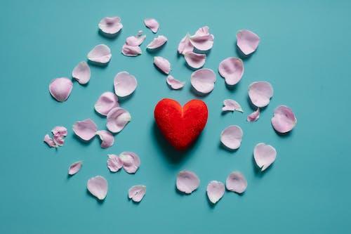aroma, aromatik, Aşk içeren Ücretsiz stok fotoğraf