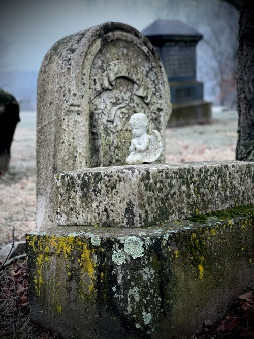 Free stock photo of angel, cemetery, death