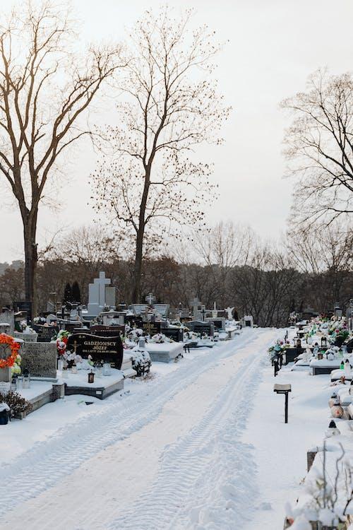 Foto stok gratis batu nisan, jalan, kuburan