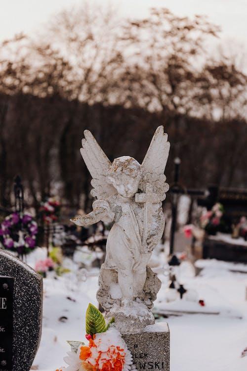 Free stock photo of art, cemetary, cemetery