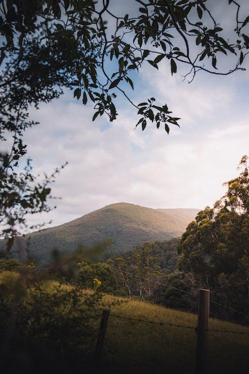 Kostnadsfri bild av åkermark, Australien, bakgrund