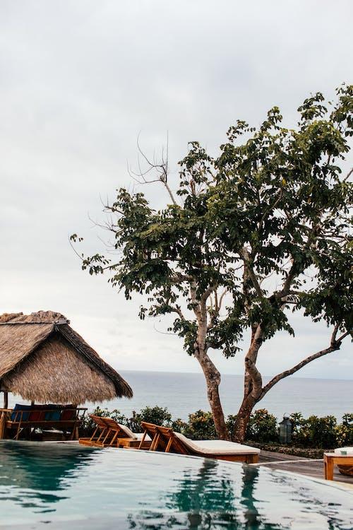 Безкоштовне стокове фото на тему «берег моря, відпустка, вода»