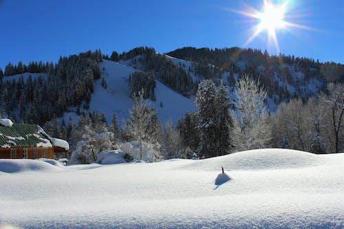 Fotobanka sbezplatnými fotkami na tému chladný, hory, kopce, nádcha
