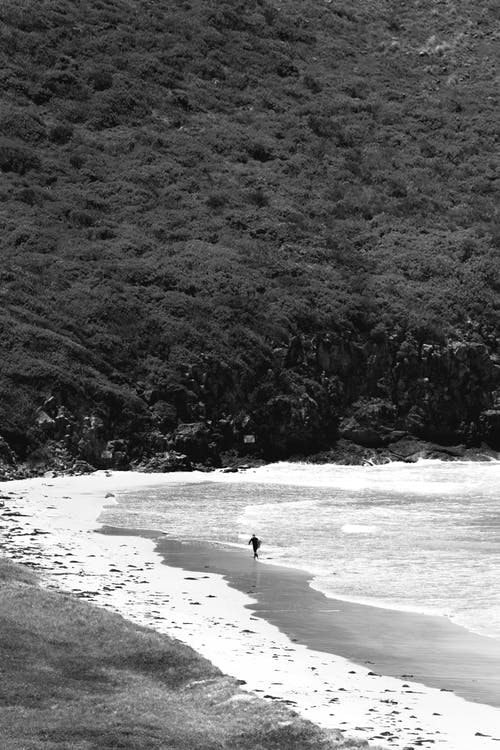 Black and white of unrecognizable tourist walking along picturesque sandy beach located near thick forest