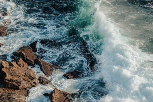 Gratis lagerfoto af betagende, blågrøn, bølge