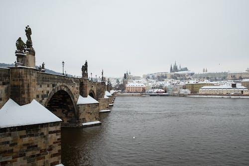 Free stock photo of castle, Charles Bridge, czech