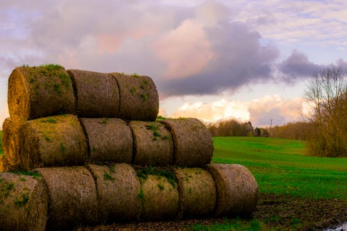 건초 더미, 경치, 경치가 좋은, 구름의 무료 스톡 사진