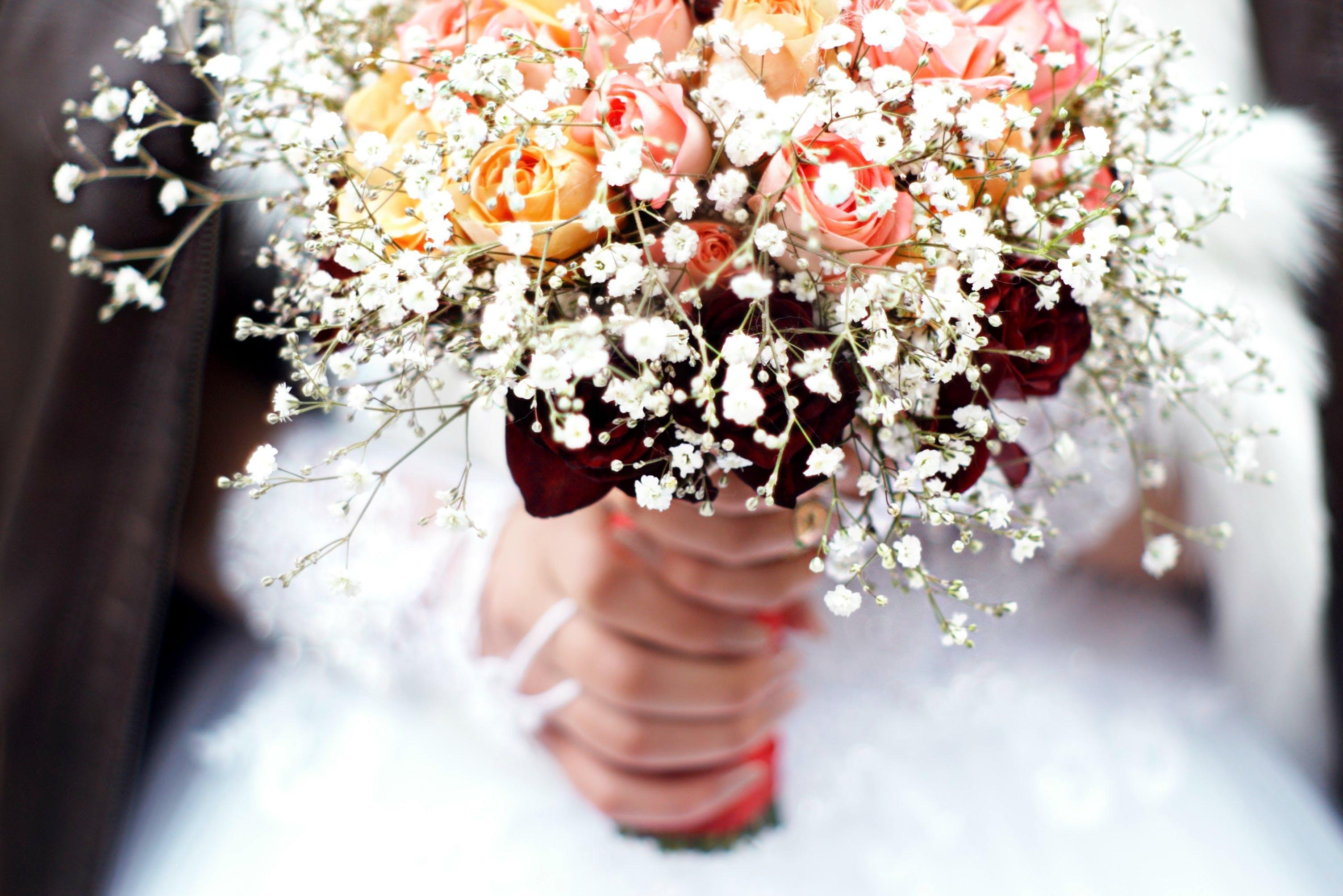 Gratis lagerfoto af blomster, blomsterarrangement, blomstrende, brudekjole