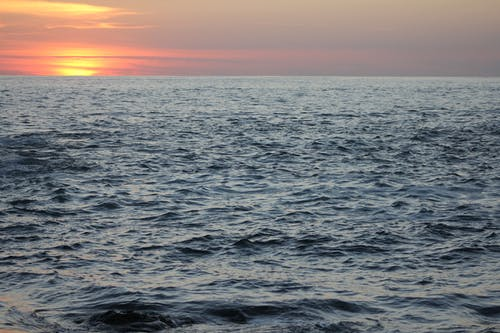 Free stock photo of dawn, ocean shore