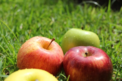 Free stock photo of apples