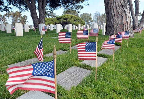 Free stock photo of american flag, graveyard, memorial day