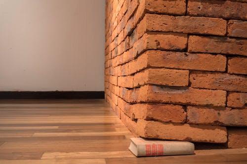 Darmowe zdjęcie z galerii z cegły, galeria sztuki, karl marx, meksyk