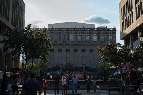 Darmowe zdjęcie z galerii z guadalajara, meksyk, podświetlenie, teatr