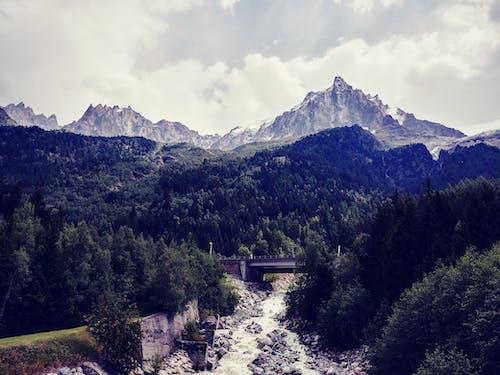 Δωρεάν στοκ φωτογραφιών με αειθαλής, αυγή, βουνά, βράχια