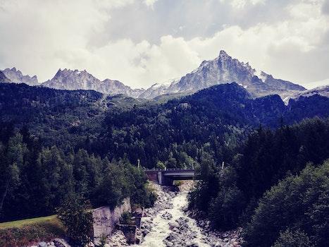 Bridge Near Trees and Mountain Landscape Photo
