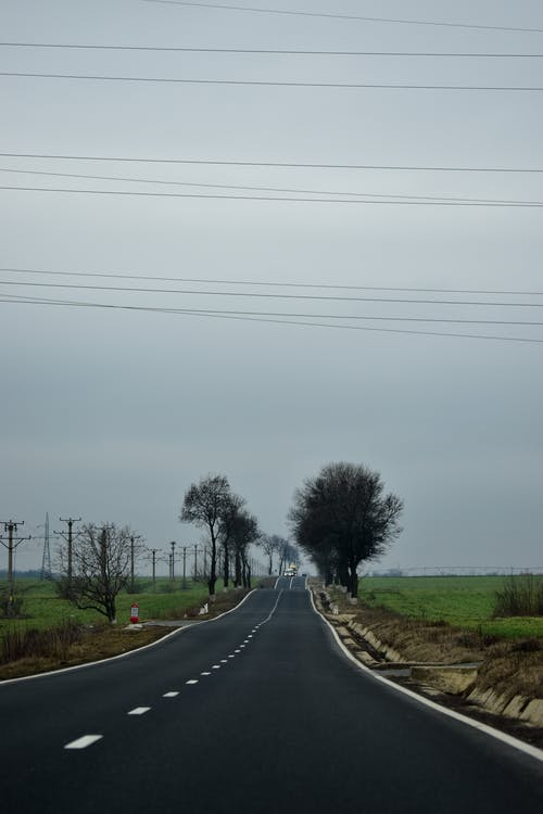 Empty asphalt road going through green grassy valley with leafless trees under overcast sky