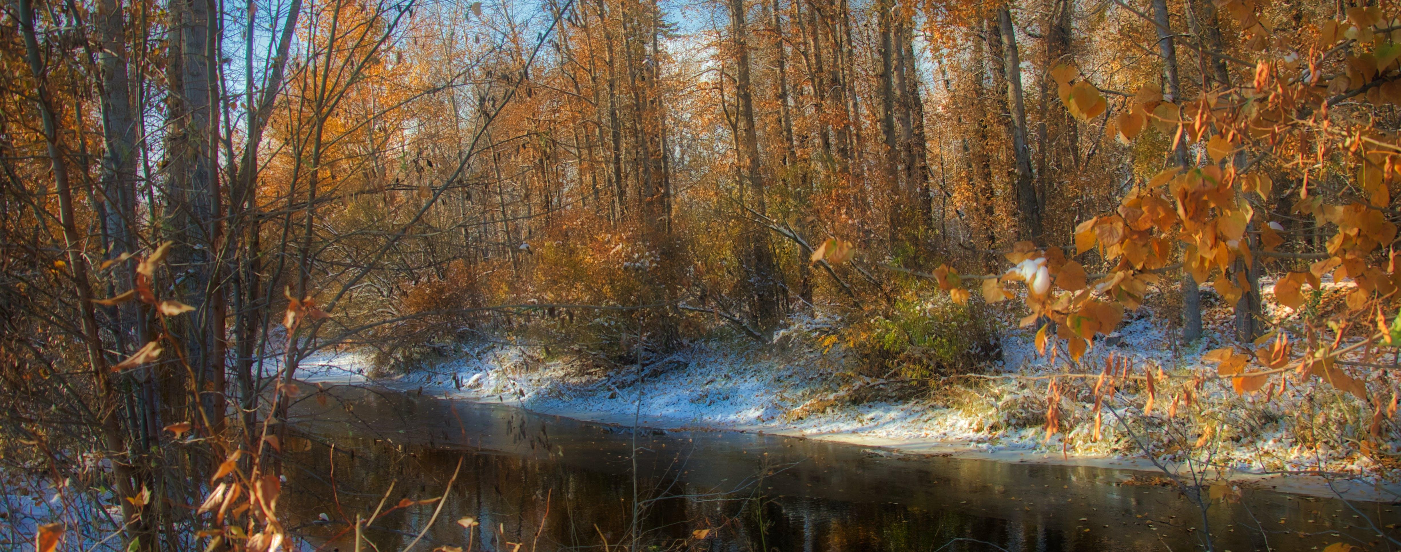 Free stock photo of snow river creek winter fall autumn colour