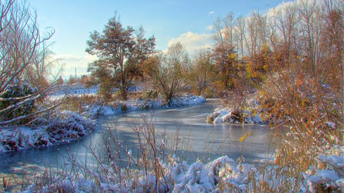 Free stock photo of creek river snow ice trees water winter