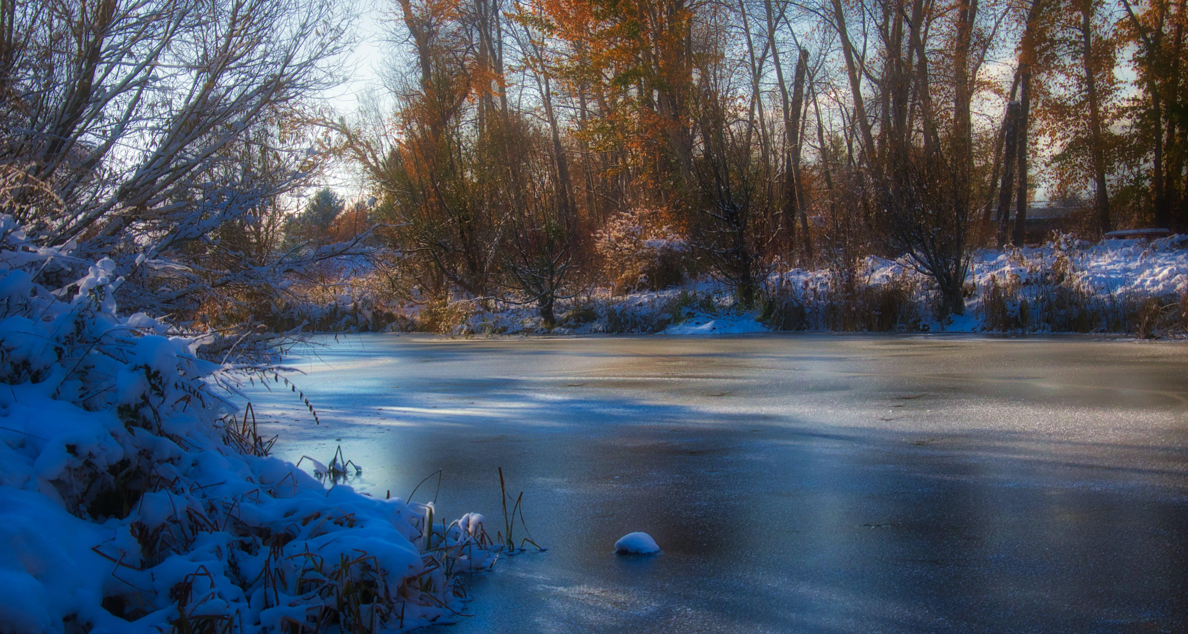 Free stock photo of winter fall ice water creek river
