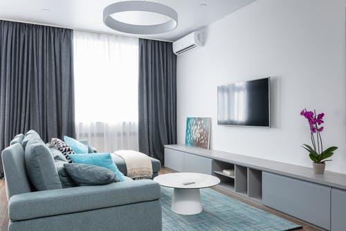 Interior of modern living room with TV on wall and blooming potted flower with picture on shelf