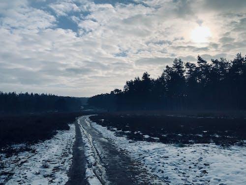 Free stock photo of atmosphere, beautiful nature, dutch