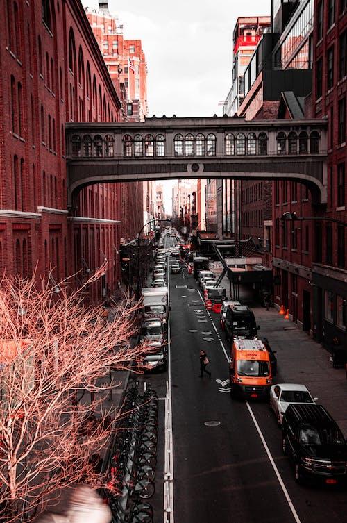 คลังภาพถ่ายฟรี ของ ตึก, ถนน, นิวยอร์ก